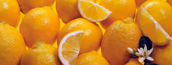 ava-limonn